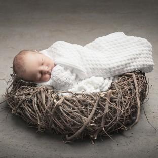Babyfoto auf Nest