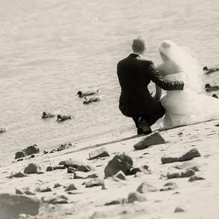 Hochzeitsfotos an der Elbe