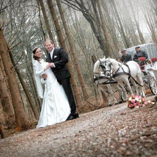 Brautpaar mit Kutsche in Hamburg