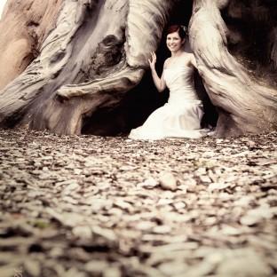 Uriger Baum mit Braut