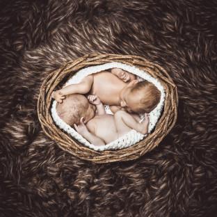 Zwillingsbabys / Babyfoto Pinneberg