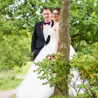 Hochzeitsfoto am Baum