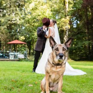 Hochzeitspaar mit Hund