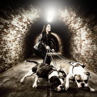 Frau mit Bulldoggen an der Kette / Portraitfoto im Studio als Composing