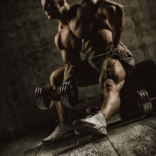 Profifoto Bodybuilder